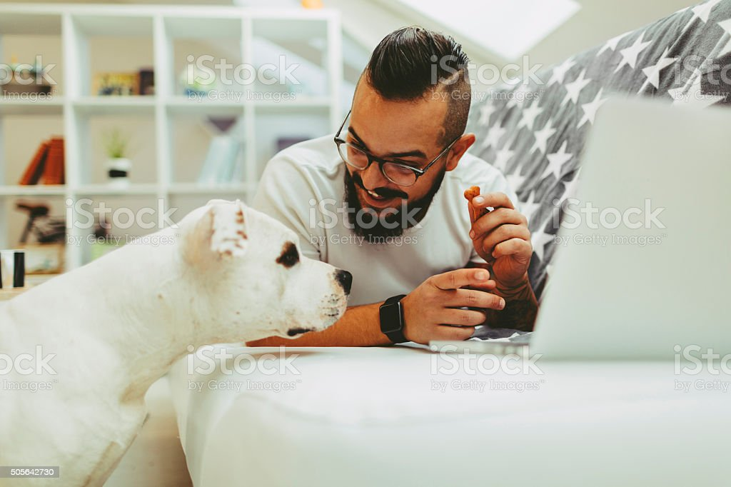 Man giving biscuit to his dog stock photo
