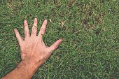man hand on green grass