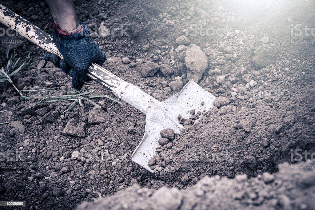 man hand shoveling the soil on garden,vintage filter stock photo