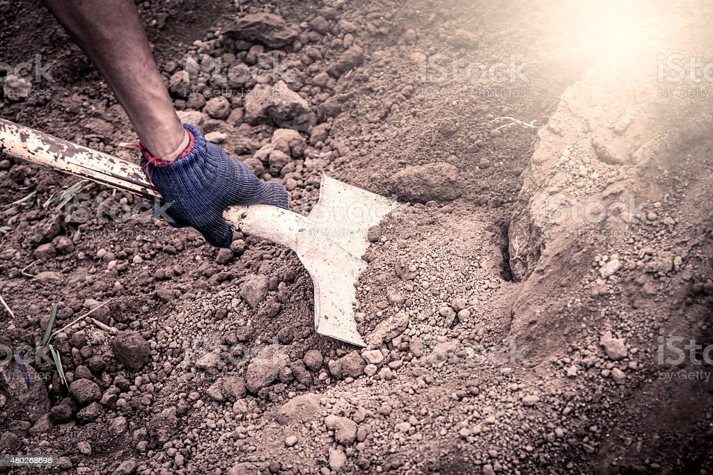 man hand shoveling the soil on garden,vintage filter stock photo