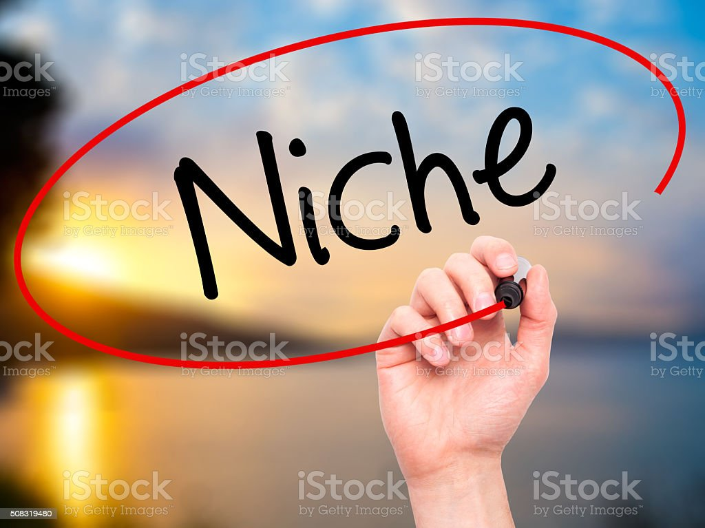 Man Hand writing Niche with black marker on visual screen. stock photo