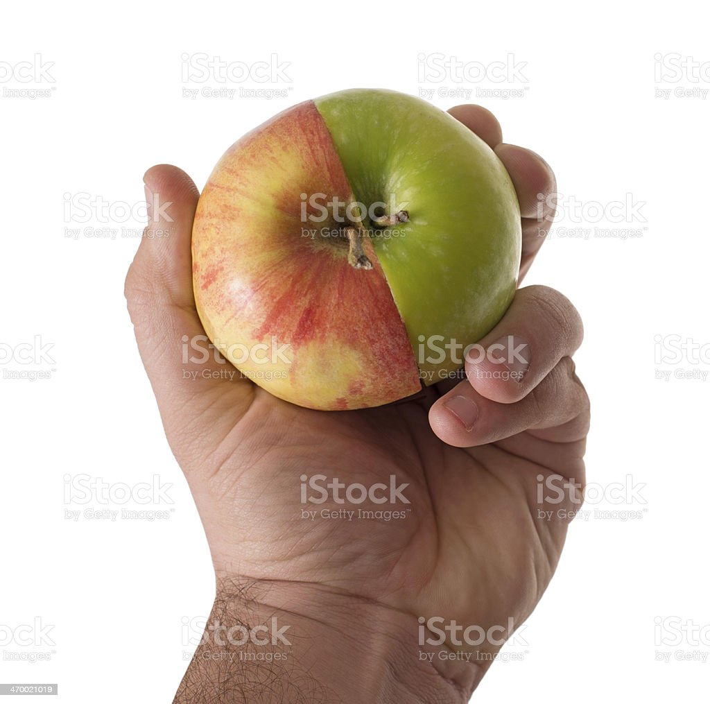 man hands with cut green  red part apples holds together stock photo