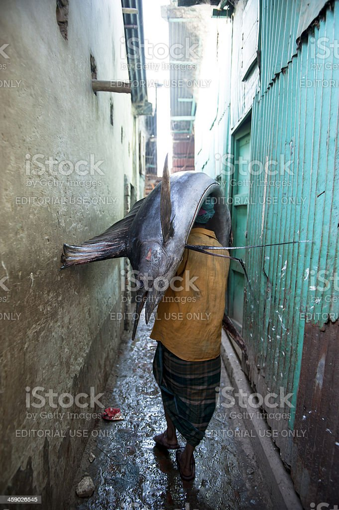 Man heading sailfish walking in small alley, Bangladesh stock photo