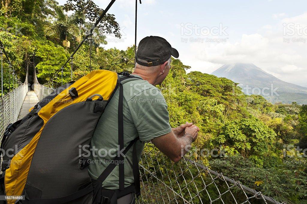Man hiking in jungle, hanging bridge, Arenal Volcano, Costa Rica stock photo