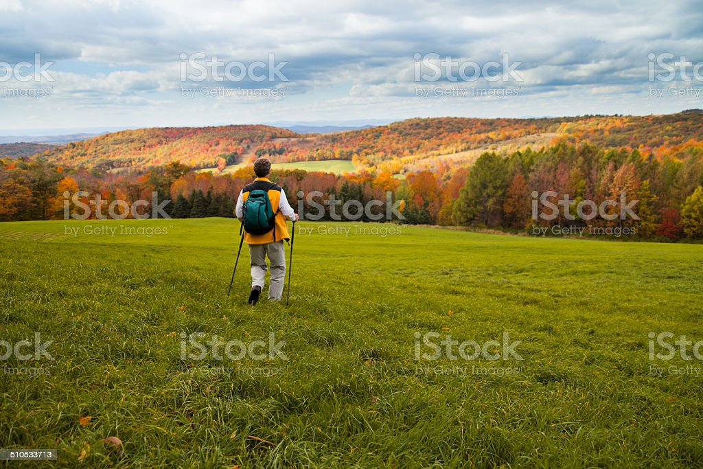 Man Hiking in Meadow stock photo