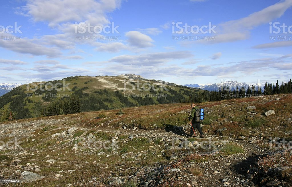 Man Hiking on Musical Bumps Alpine Route royalty-free stock photo