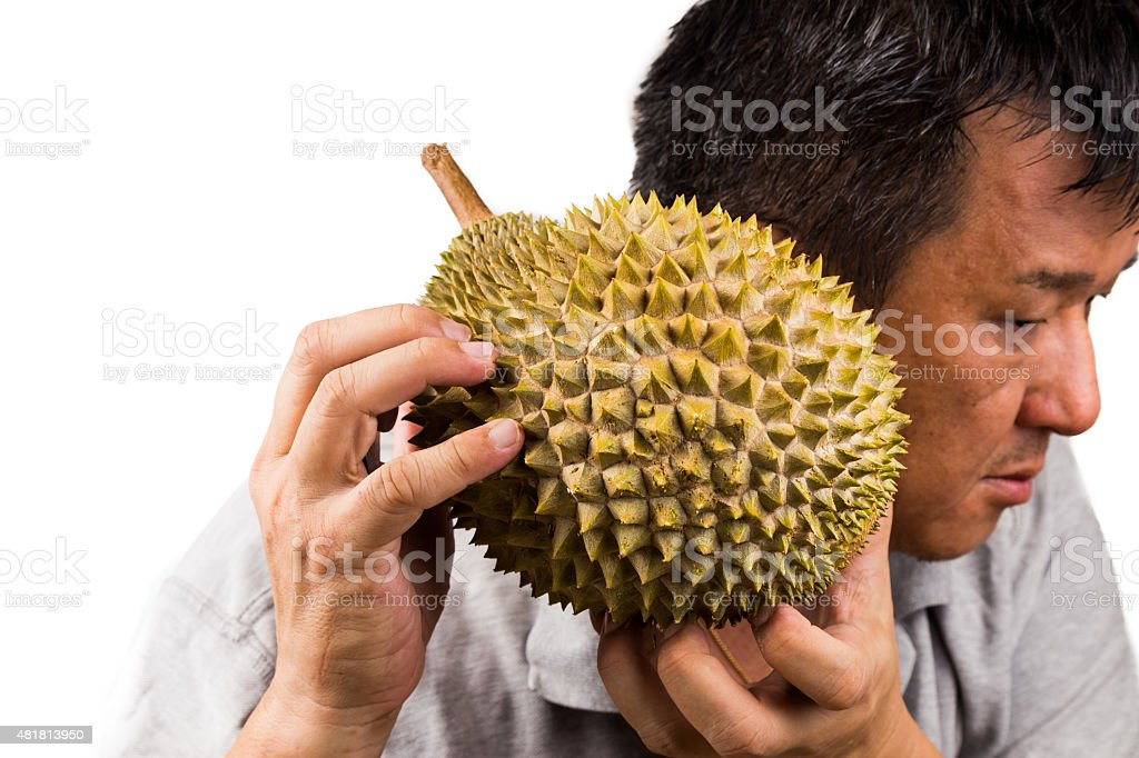 Man hold and shake durian fruit to assess its ripeness stock photo