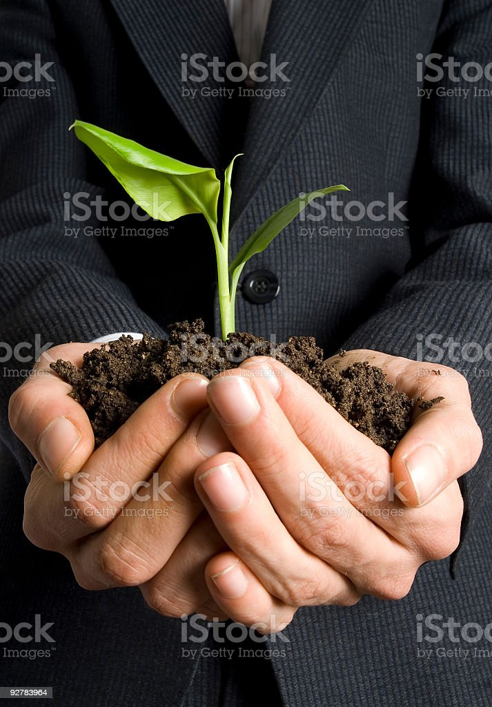 A man holding a pile of dirt with a sapling in it royalty-free stock photo