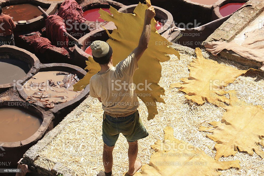 Man holding animal skin in tanneries - morocco stock photo