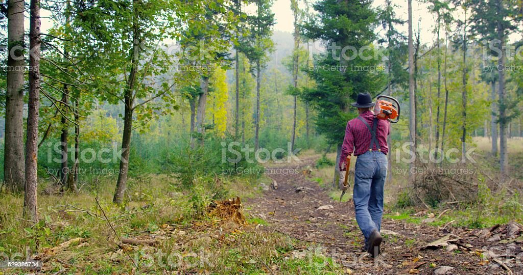 Man holding chainsaw and axe stock photo