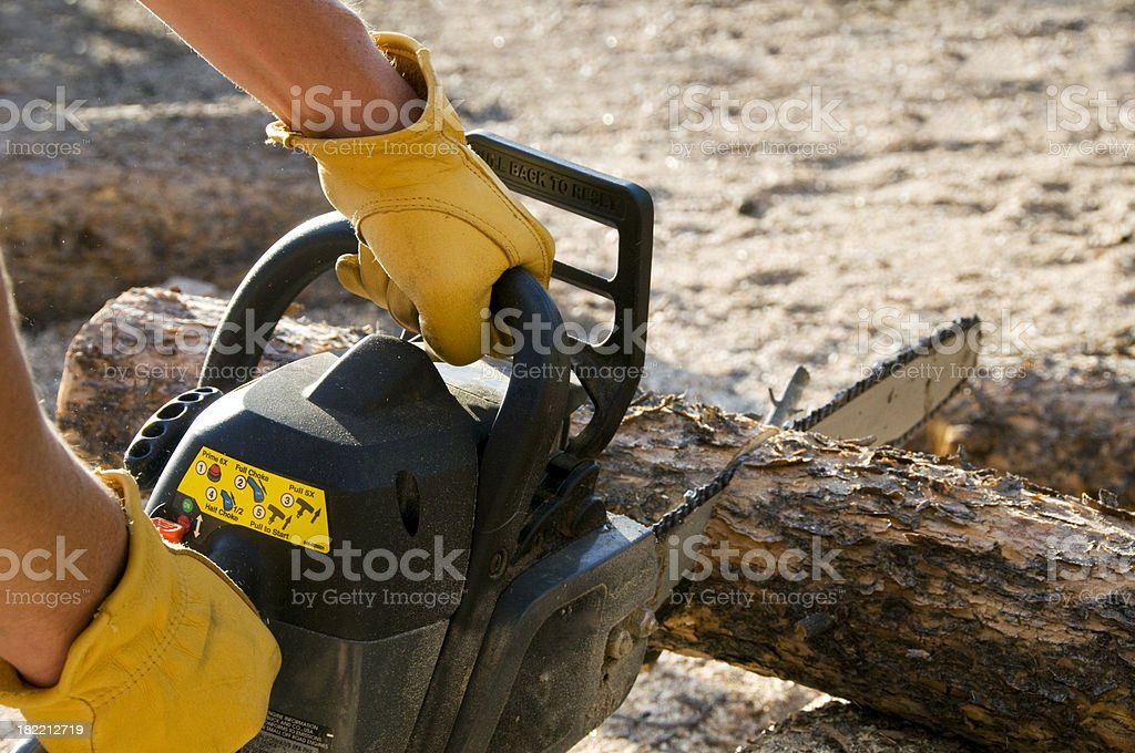 Man Holding Chainsaw royalty-free stock photo