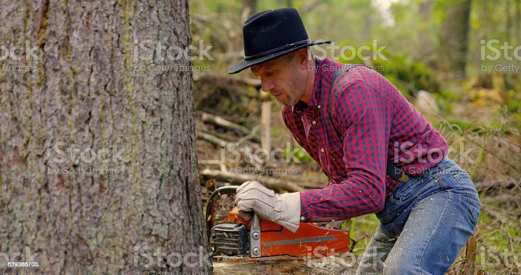 Man Holding Chainsaw stock photo