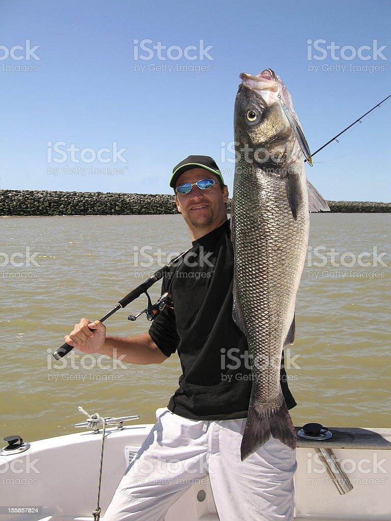 Man holding large sea bass catch royalty-free stock photo