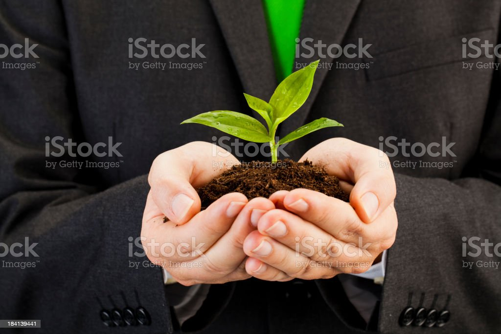Man holding small plant in dirt in his hands stock photo
