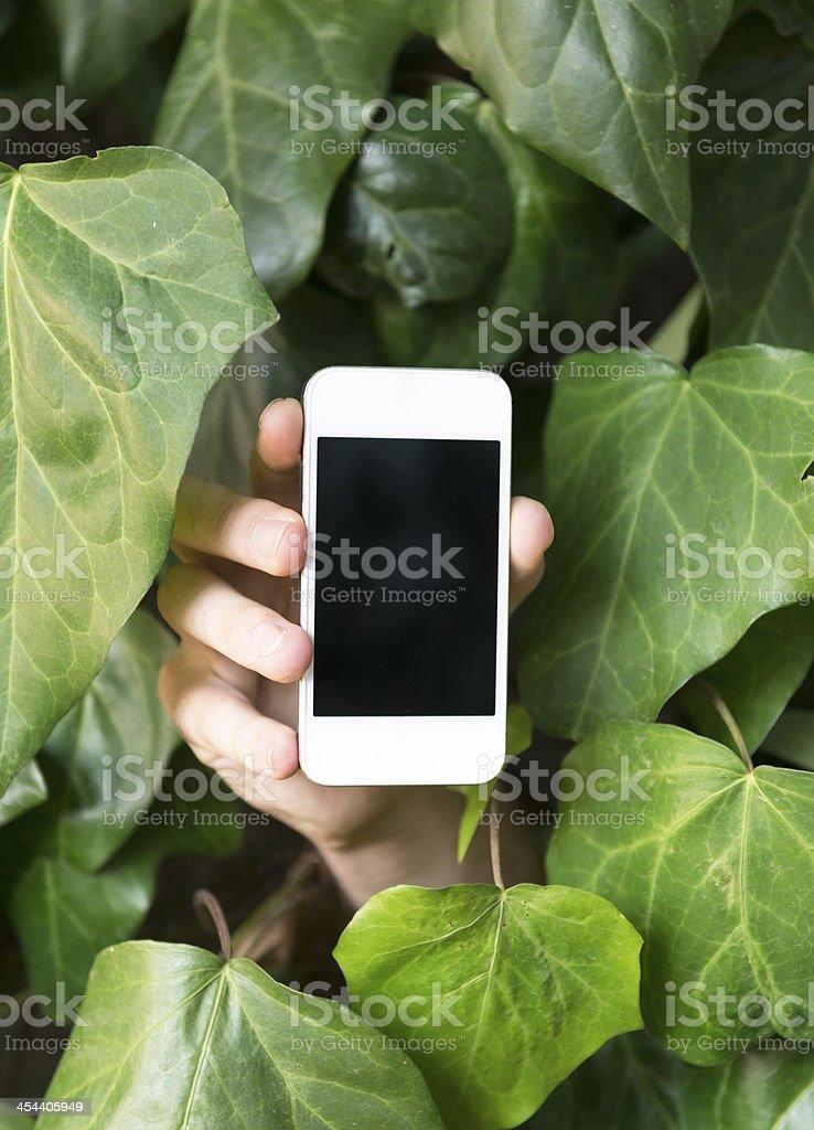man holding smart phone outdoors stock photo