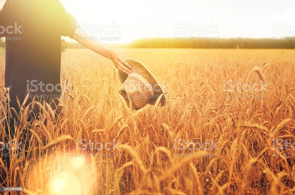 Man holding straw hat standing in a wheat field at sunset stock photo