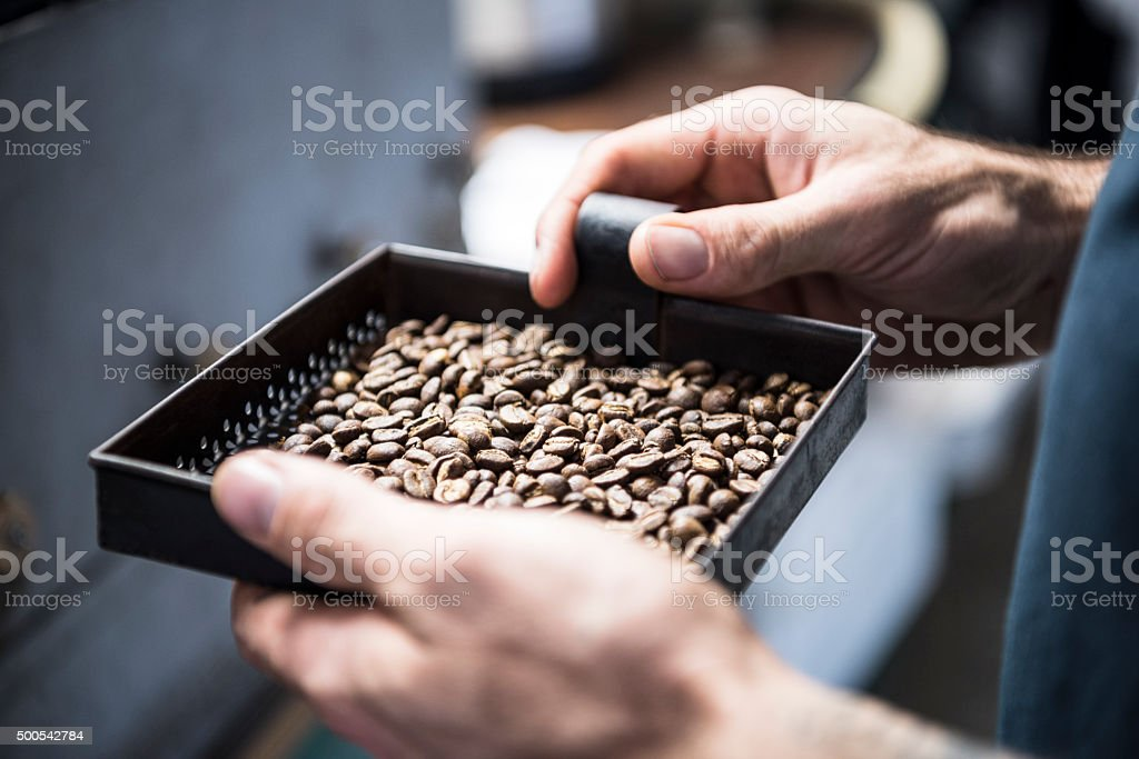 Man holding tray of fresh coffee beans, close up stock photo