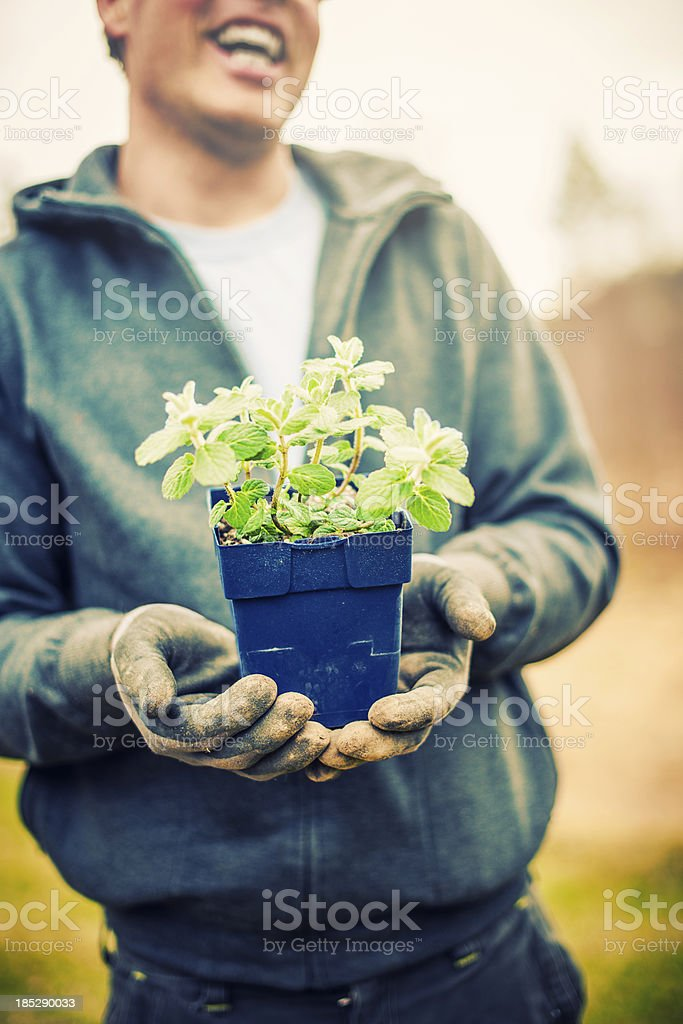 Man holding up some herbs royalty-free stock photo