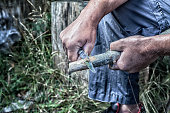 Man Holding Whittling Knife Carving Wooden Stick