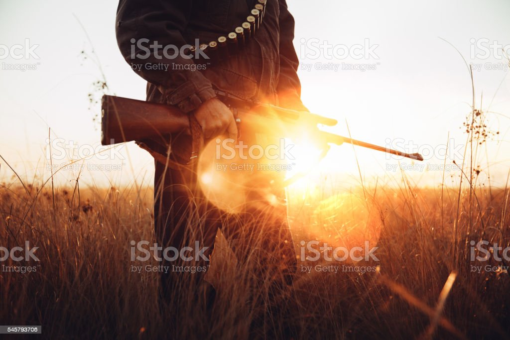 Man holds rifle in his hands in field with sun stock photo