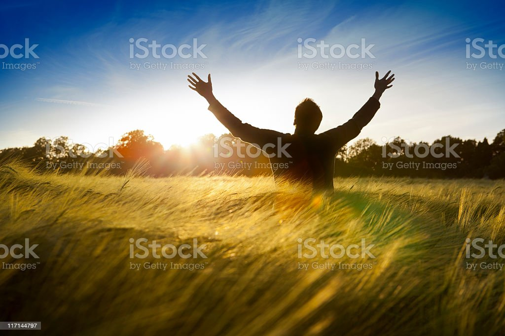 Man in a field with hands raised to the sun stock photo