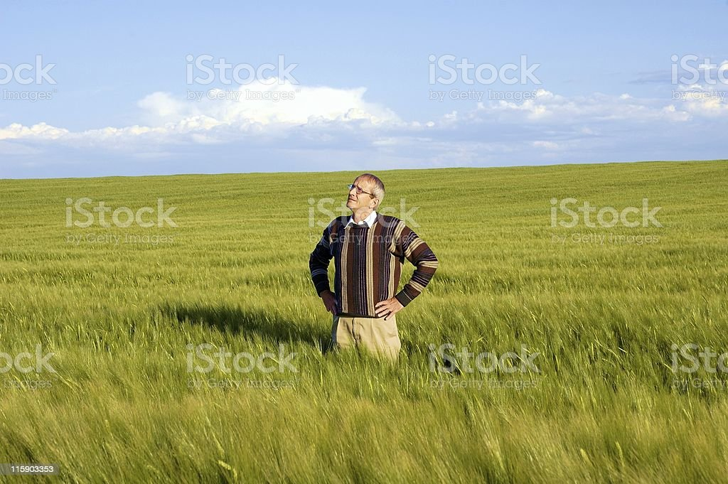 Man in Field - Looking Up royalty-free stock photo