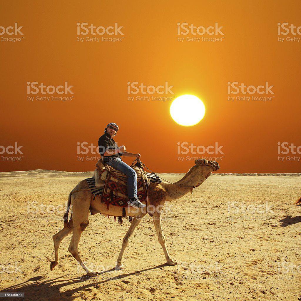 Man in glasses riding a camel in desert at sunset stock photo