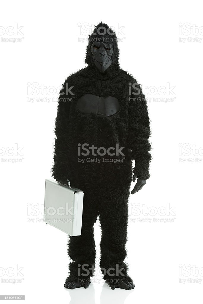 Man in gorilla costume holding a briefcase royalty-free stock photo