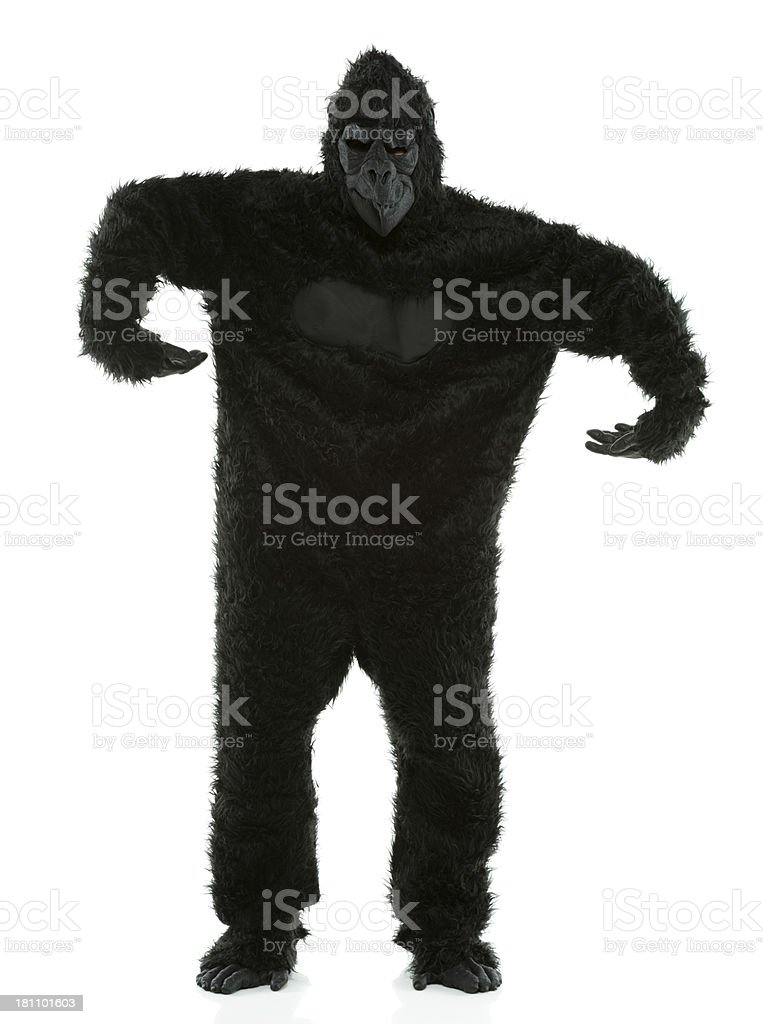 Man in gorilla costume royalty-free stock photo