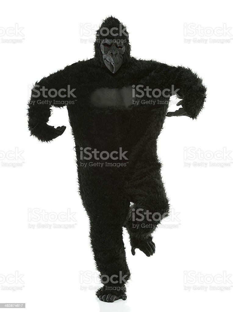 Man in gorilla costume royalty-free stock photo