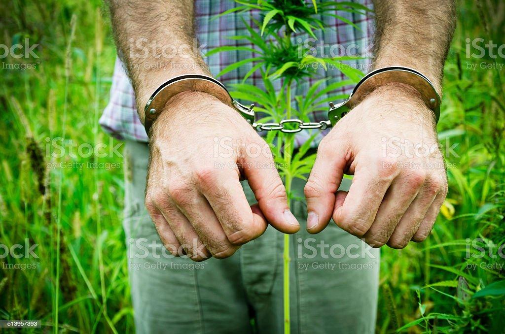 Man in handcuffs - drug crime stock photo