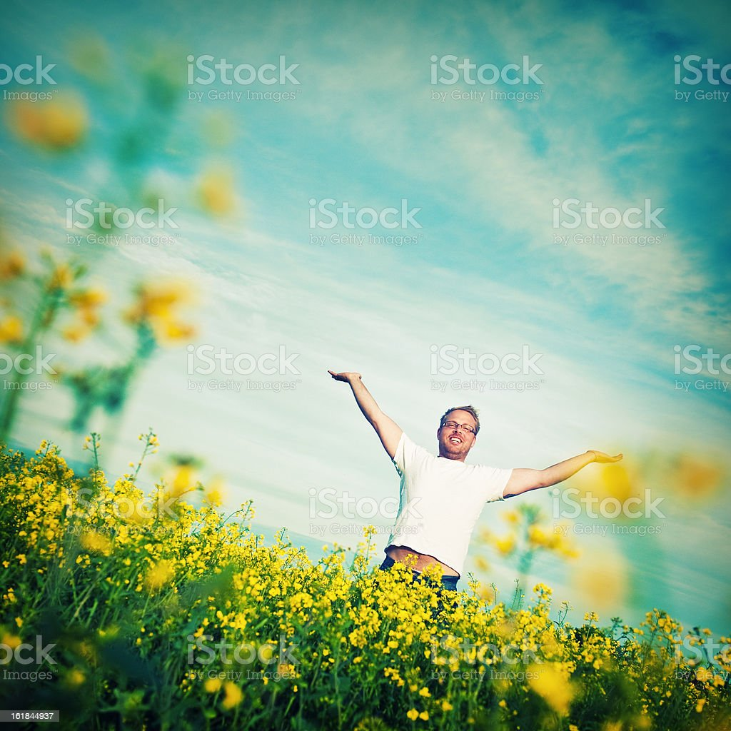 Man in rapeseed field royalty-free stock photo