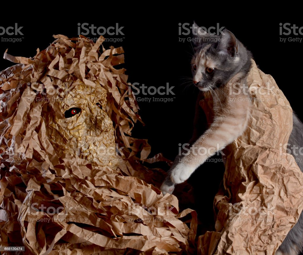 Man in terrible mask holding a cat stock photo