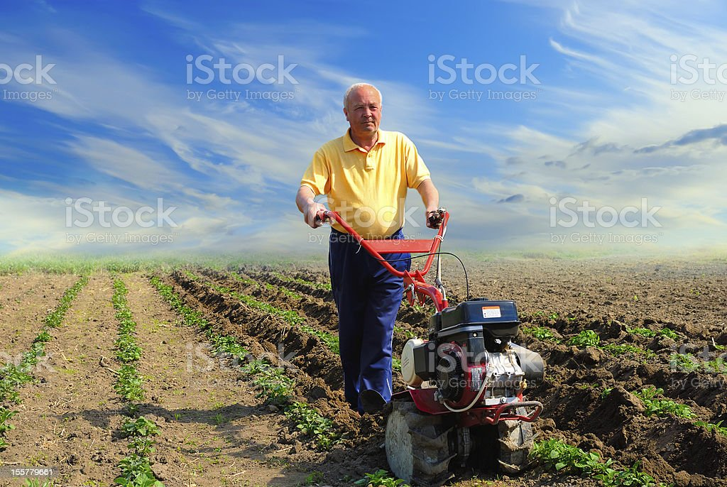 Man in the field with motor cultivator stock photo