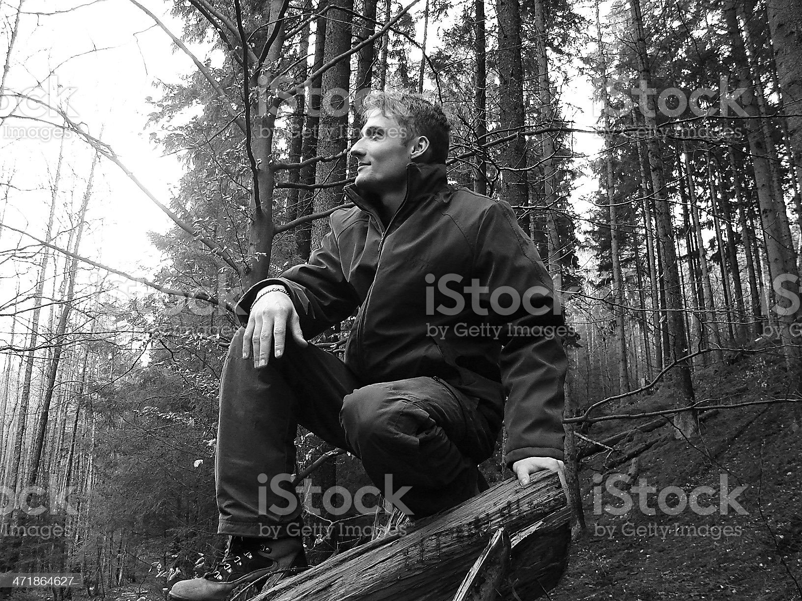 Man in the forest royalty-free stock photo