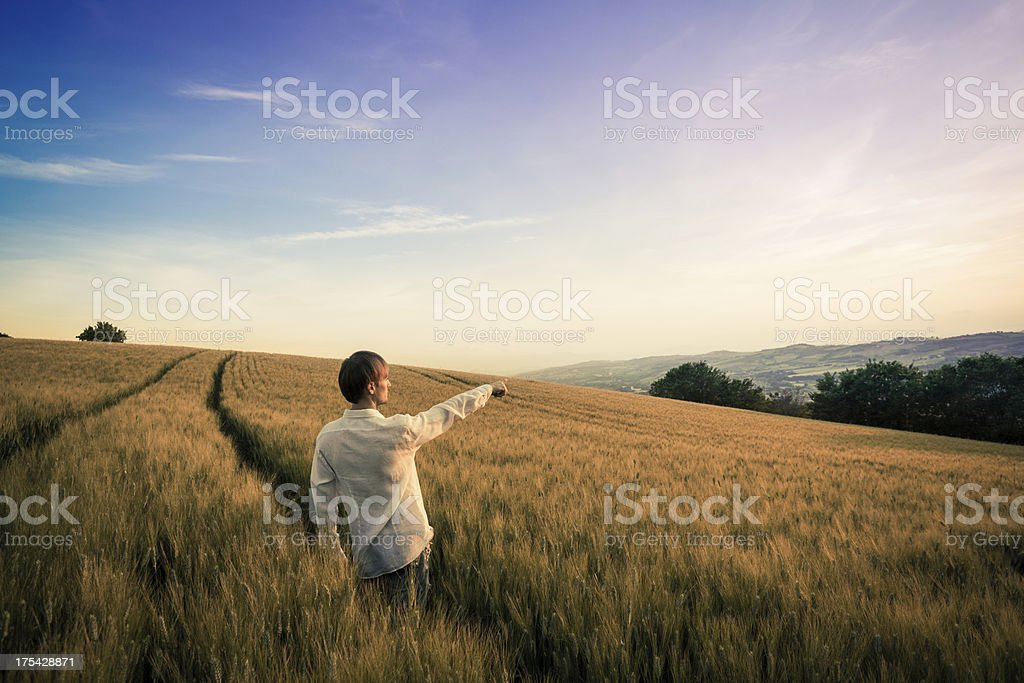 Man in Wheat Field Pointing the Horizon royalty-free stock photo