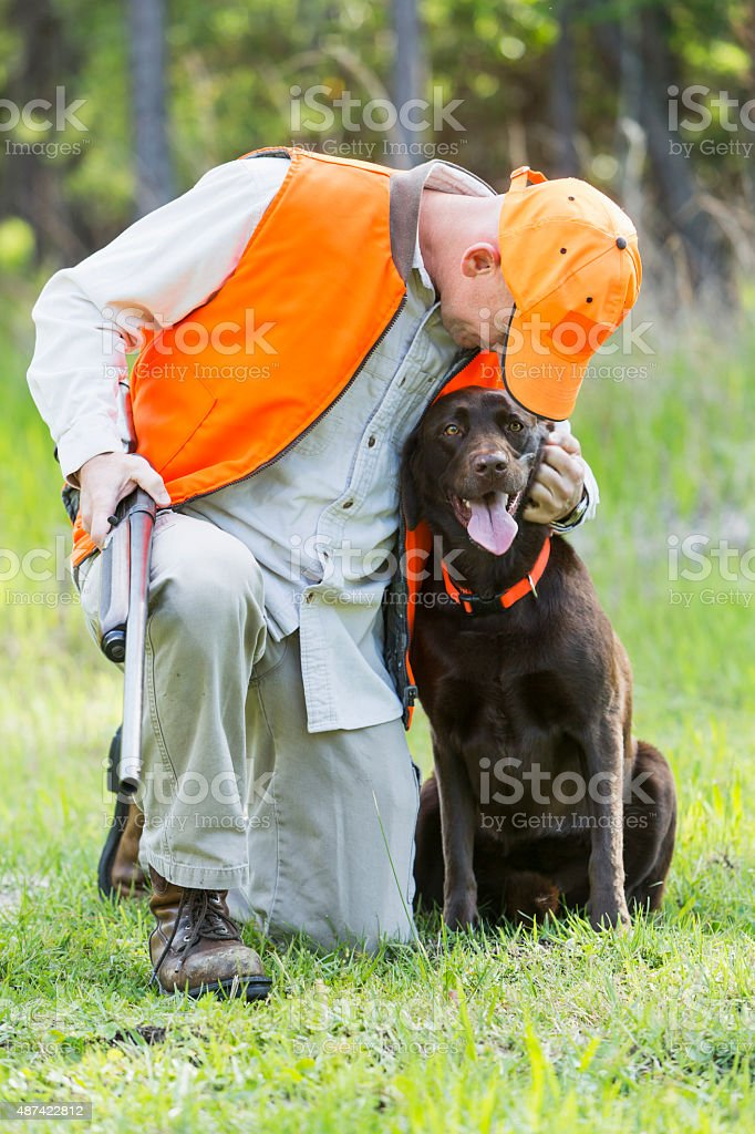 Man in woods hunting with shotgun and dog stock photo