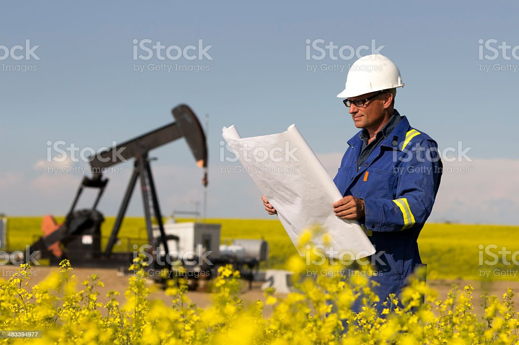 Man in yellow field with blueprints royalty-free stock photo