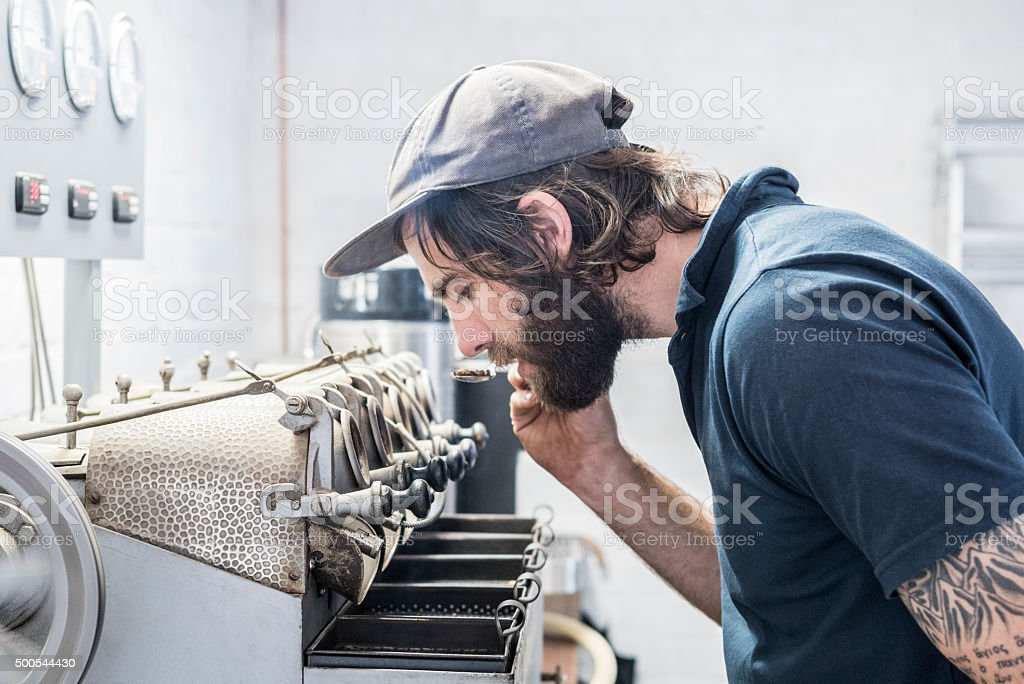 Man inspecting fresh beans in coffee roasting warehouse stock photo