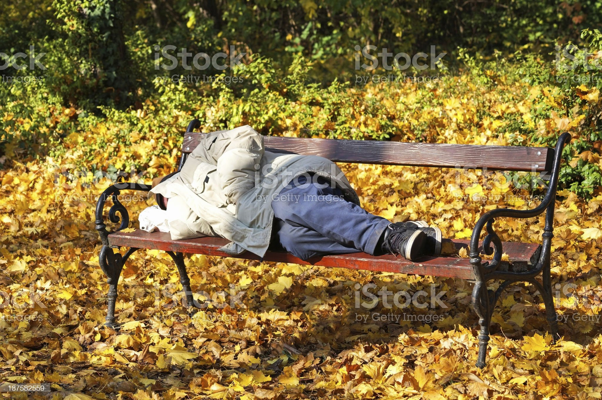 man is sleeping on a bench royalty-free stock photo