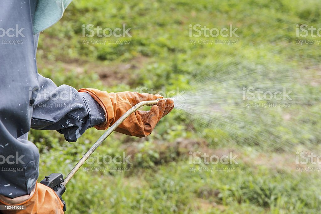 Man  is spraying herbicide stock photo