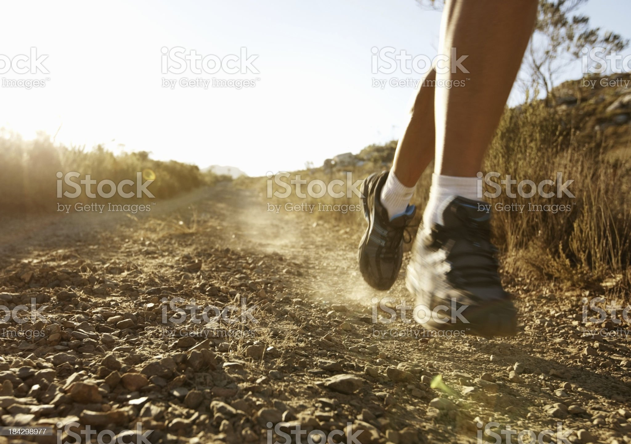 Man jogging on a sunny day royalty-free stock photo