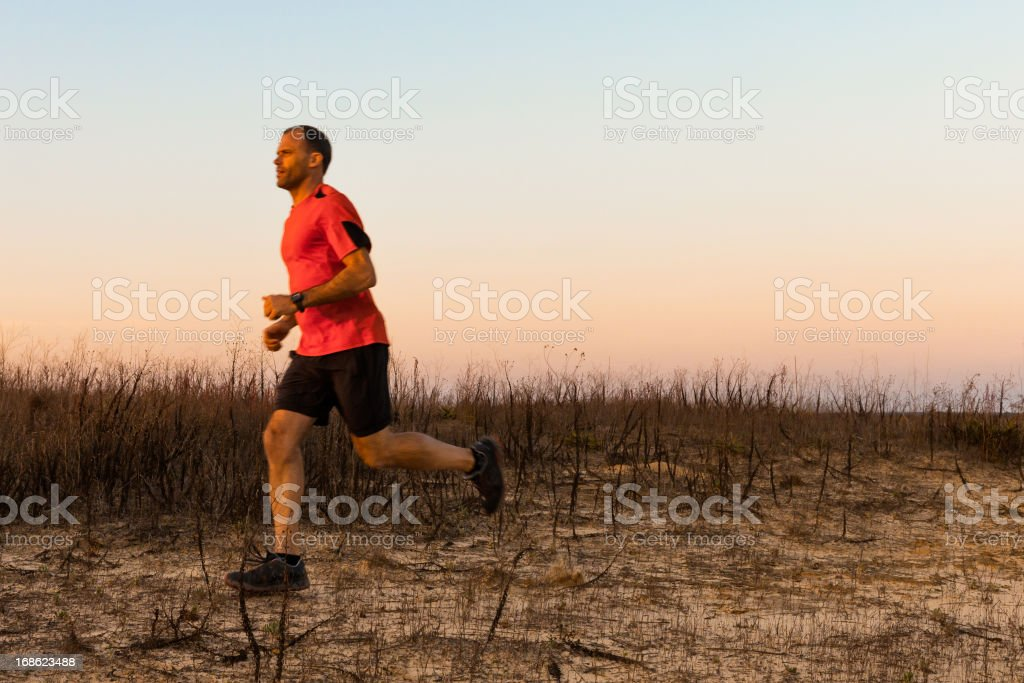Man Jogging royalty-free stock photo