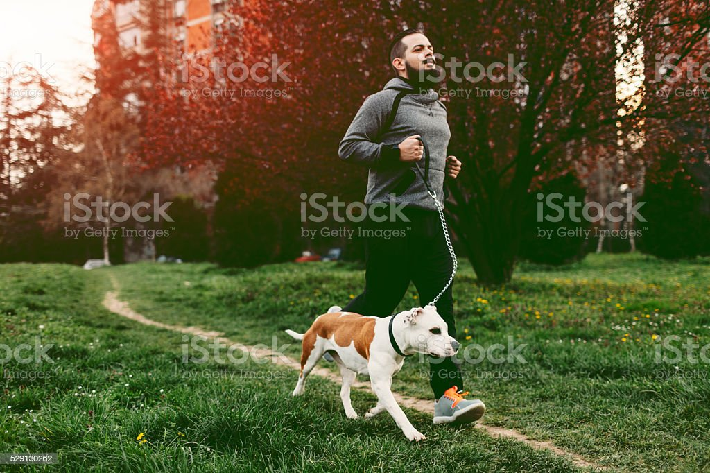 Man Jogging With His Dog. stock photo