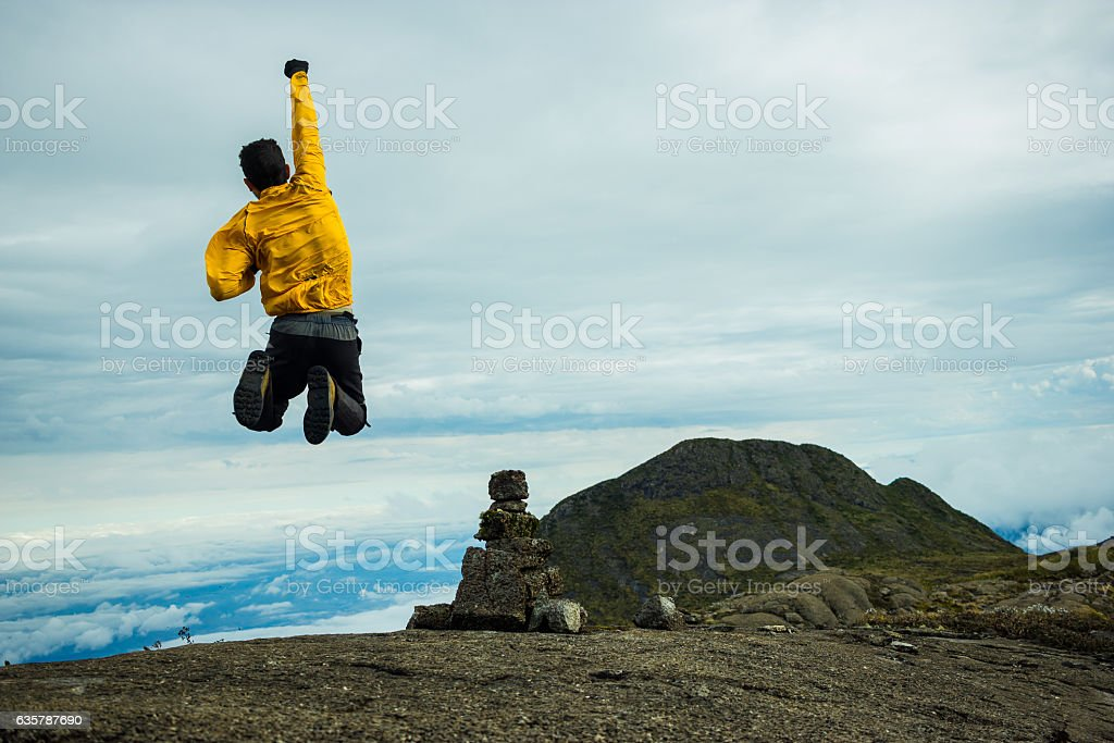 Man Jumping Celebrating Success with the view of a Mountain stock photo
