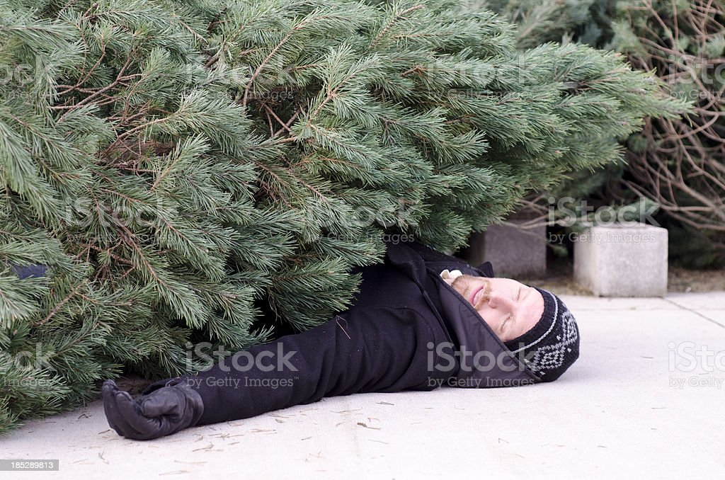man lays underneath a christmas tree stock photo
