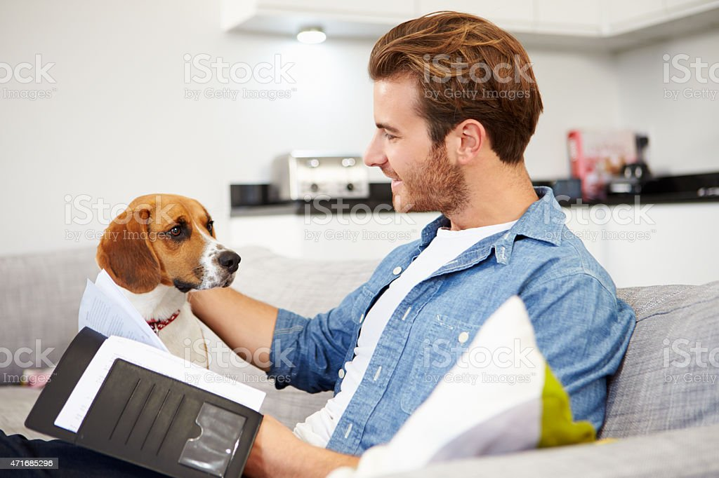 Man Looking At Paperwork And Playing With Dog At Home stock photo