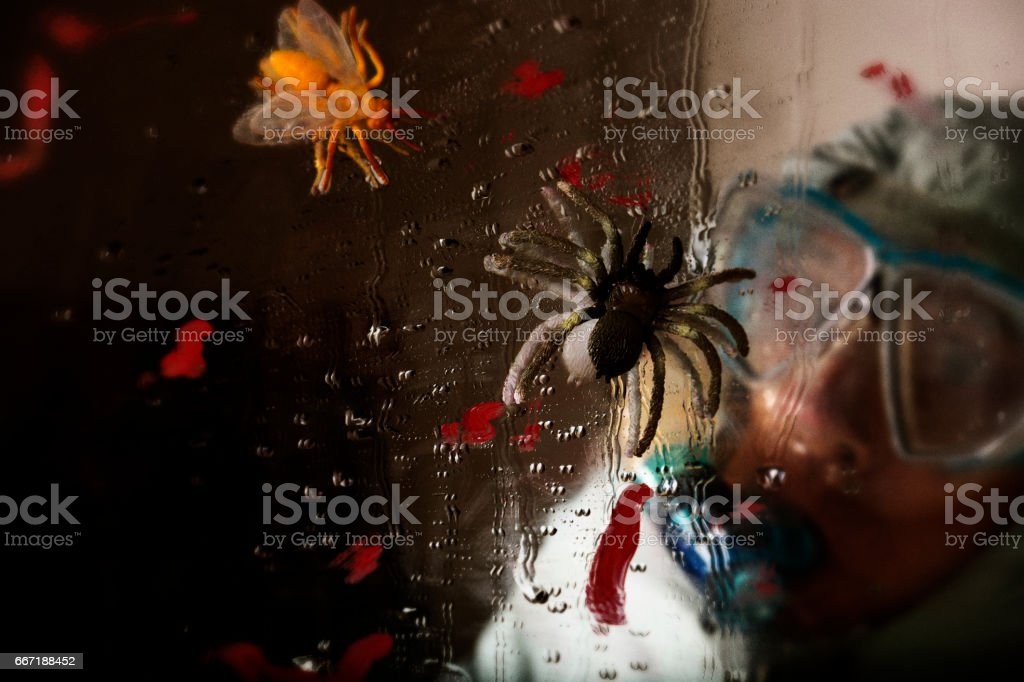 Man looks at insects on wet window stock photo