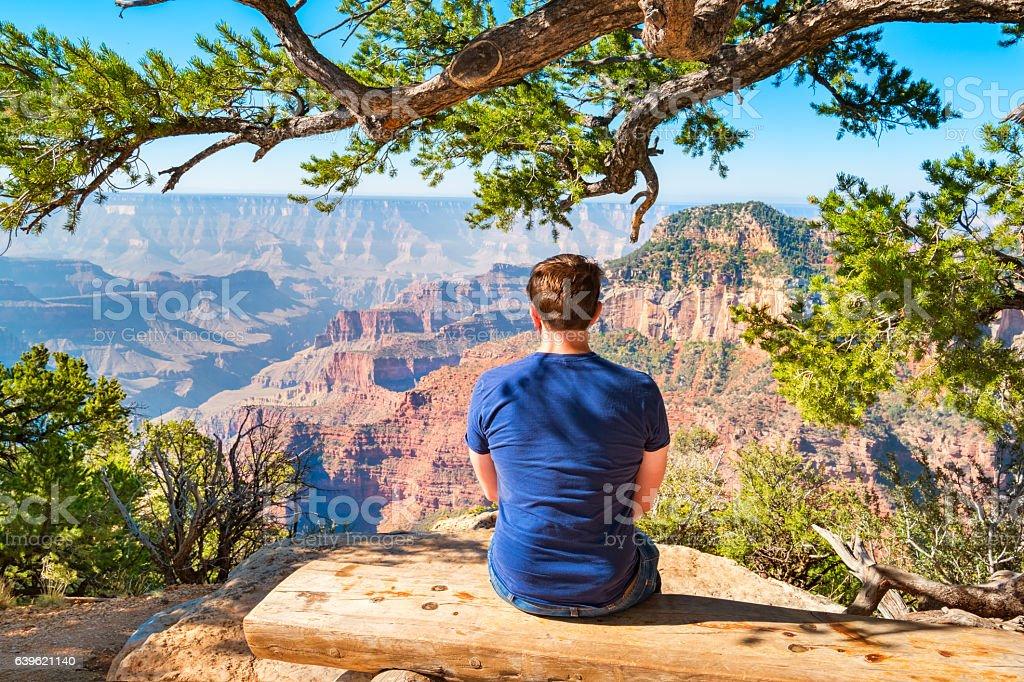 Man Looks at View Grand Canyon National Park Arizona USA stock photo