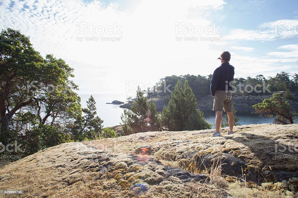 Man looks out to sea, past trees and peninsula stock photo